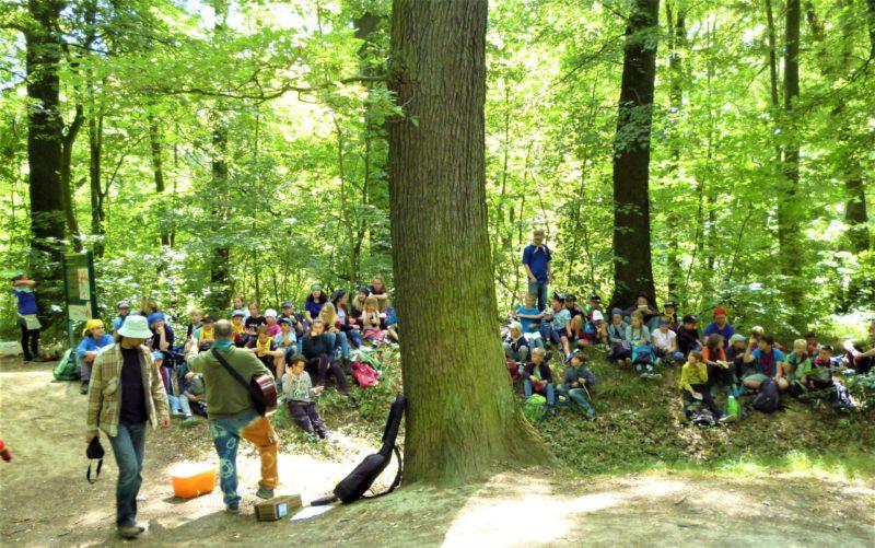 Kindercamp, Kindern sitzen im Wald auf einem Hügel und hören einem Mann zu, der Gitarre spielt