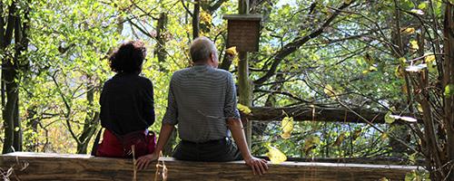Seelsorge, zwei Personen sitzen auf einer Bank im Wald und sehen in die Ferne